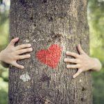Schau tiefer – welche Werte vertrete und lebe ich? [Blogparade]